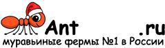 Муравьиные фермы AntFarms.ru - Рязань